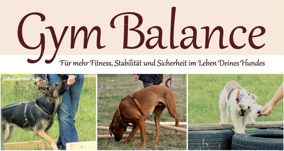Gym Balance - Für mehr Fitness, Stabilität und Sicherheit im Leben Deines Hundes